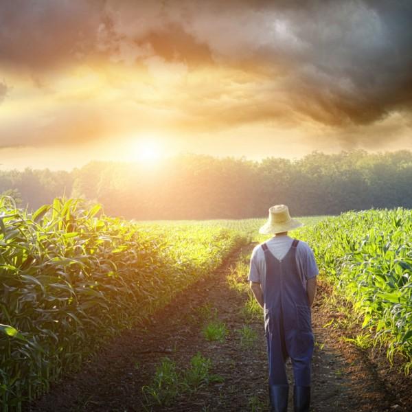 「週末農業」で身も心もリフレッシュ。個性的な農業体験ができるおすすめファーム5選!