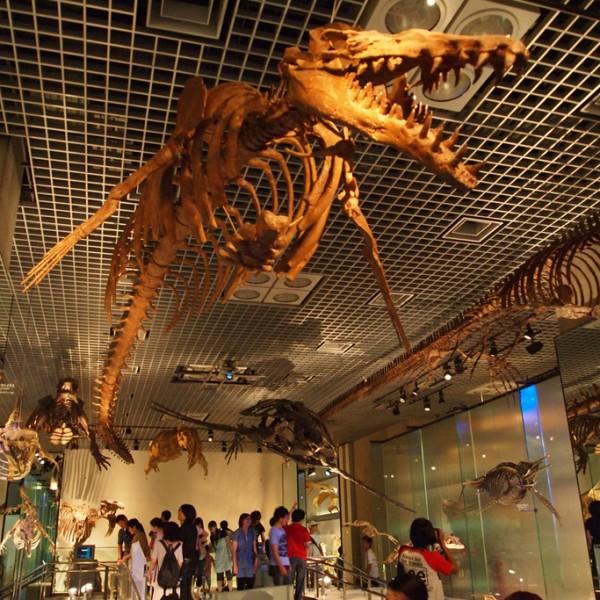 大人もワクワク!パパと子どもで楽しめる、日本科学未来館・国立科学博物館