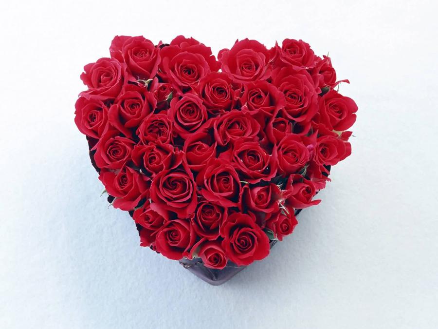 本数にも意味があるって知ってた?女性にもっと喜ばれる、花を贈るシチュエーションと選び方