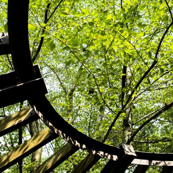 都会に疲れたら。東京で自然を感じられる定番と穴場スポット10選