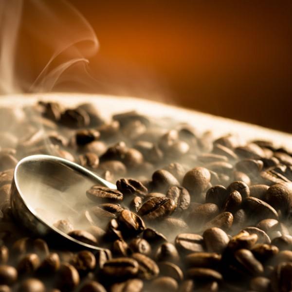きっと出会える!お気に入りのOne Beans。 全国の自家焙煎スペシャリティコーヒー専門店 6選!