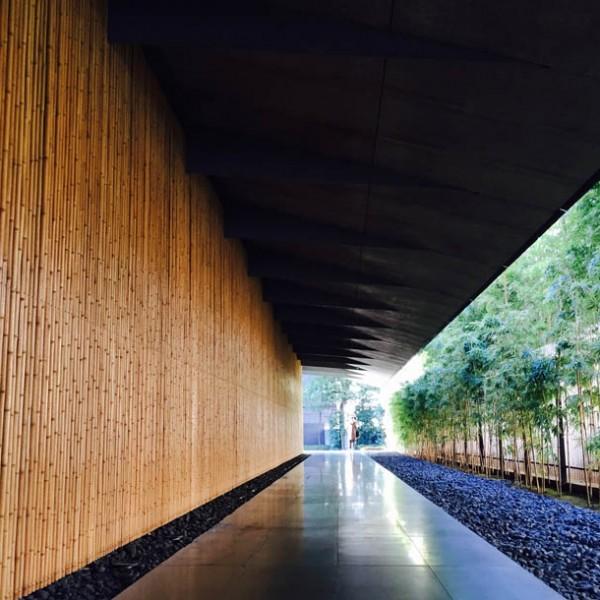 都会の真ん中で深呼吸してみない? 音・風・光が織りなす、根津美術館の美しい庭園の魅力。