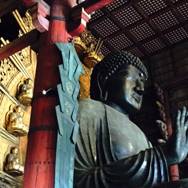 """日本最大が奈良に… 圧巻の""""東大寺""""は鳥肌必至の大人スポット。"""