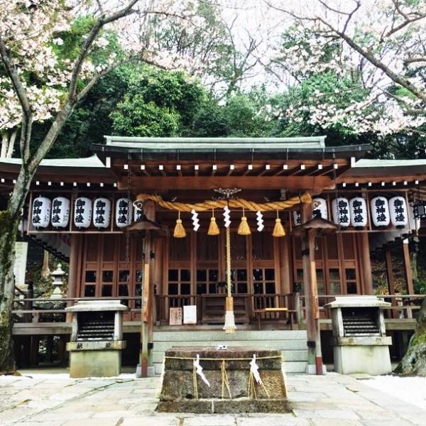 """神の息遣いを感じる。 東大阪・生駒山に佇む、""""石切劔箭神社 上之宮""""。"""