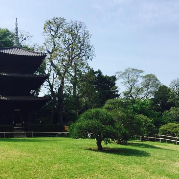 """推定年齢600歳、三重塔がシンボル! 東京都内に佇むオアシス""""椿山荘""""の日本庭園。"""
