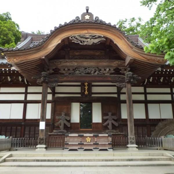 休日にふらっと訪れたい「深大寺」…歴史・水・森林を五感で、楽しむ