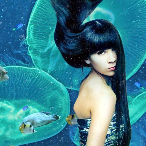 クラゲ展示数世界一! 山形県・鶴岡市立加茂水族館が紡ぐ、波乱万丈の逆転劇とは?
