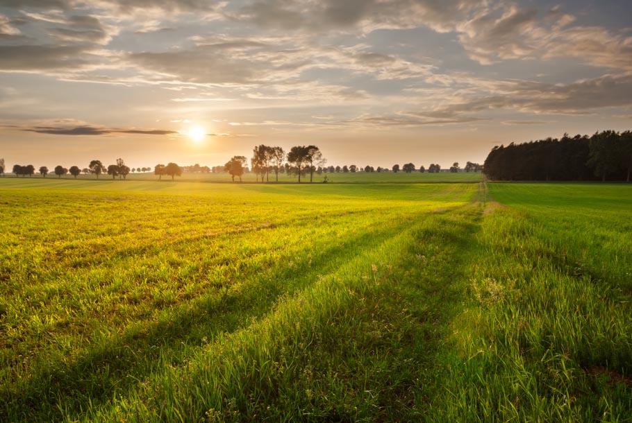 """夏の思い出を探しにいこう。 目に焼き付けたい""""田園風景""""の美しさ。"""