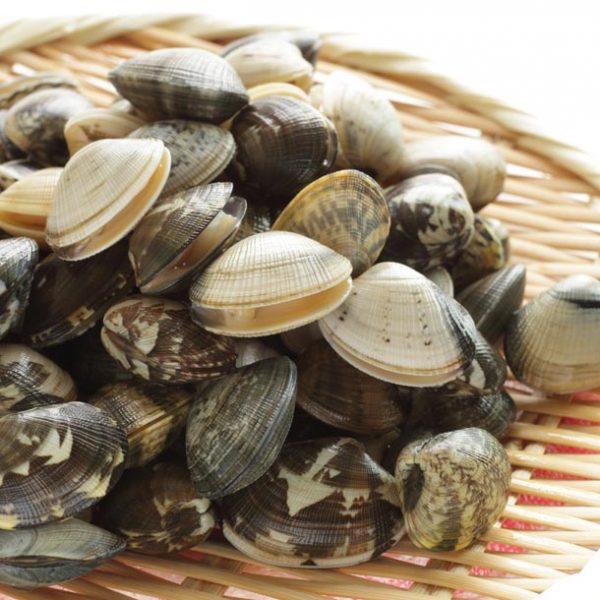 """江戸漁師が生んだ賜物。郷土料理100選のひとつ""""深川めし""""を食すべし。"""