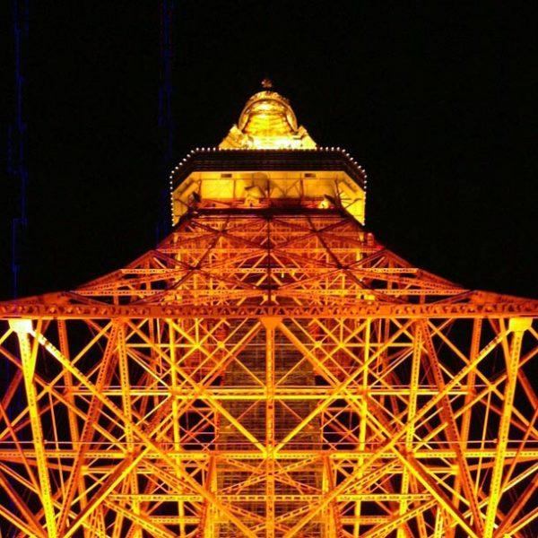 """日本を照らす八方美人。 昼・夜の表情が共に美しい、""""東京タワー""""の魅力に迫る。"""