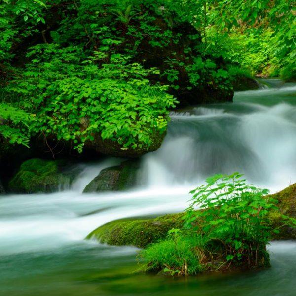 """自然美を感じるチャンス到来! 日本が誇る""""渓谷""""で、人としての豊かさを取り戻そう。"""